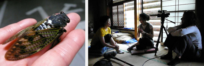 geluid Japanse Krekel | Interviewen van de vrouwen - met tolk Yaemi Natumi en Kie Ichimura